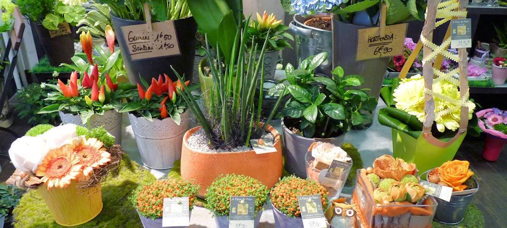 A FLEUR DE PEAU - Rosheim - Fleuriste Créateur